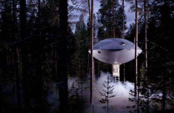 Treehouses (1)