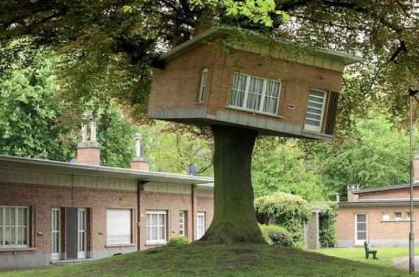 Treehouses (11)