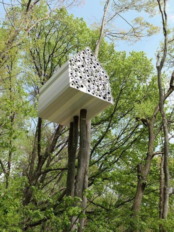 Treehouses (13)