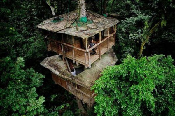 Treehouses (14)