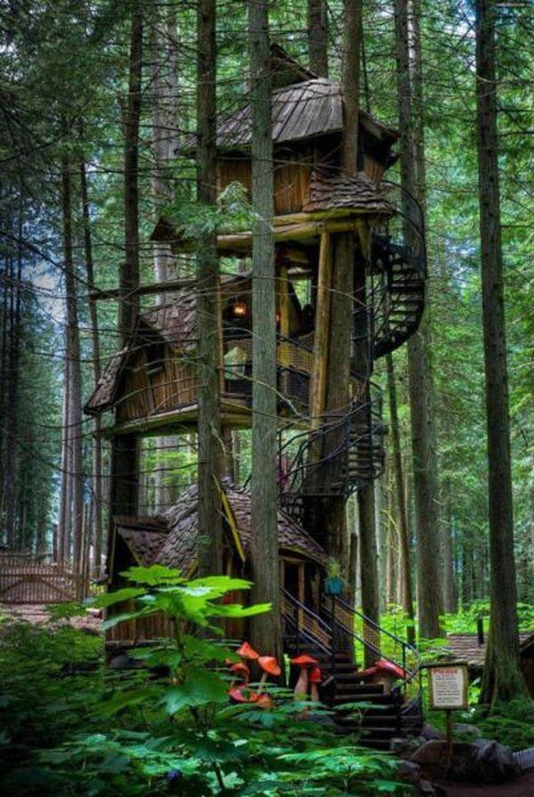 Treehouses (2)