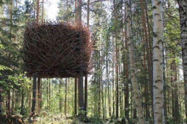 Treehouses (3)