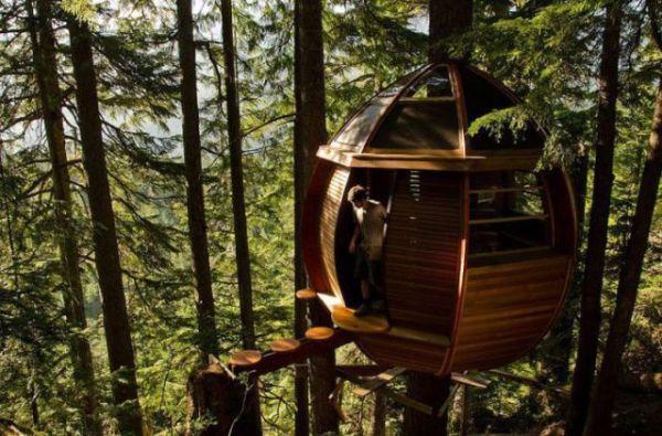 Treehouses (4)