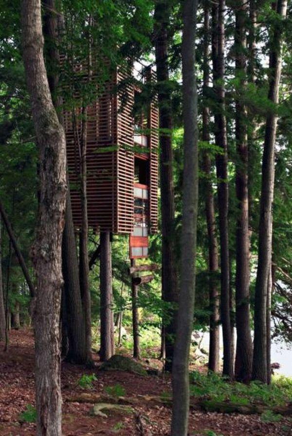 Treehouses (5)