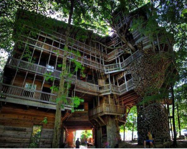 Treehouses (6)