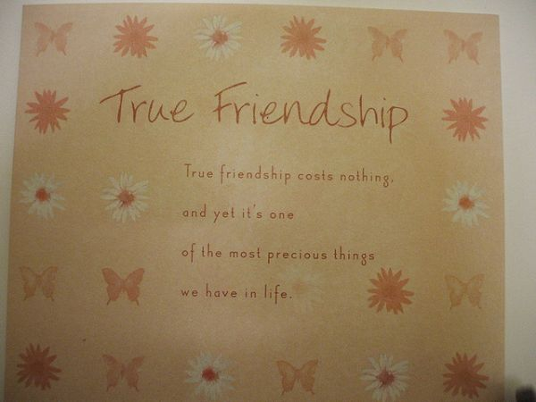Heart Touching Friendship Quotes (6)