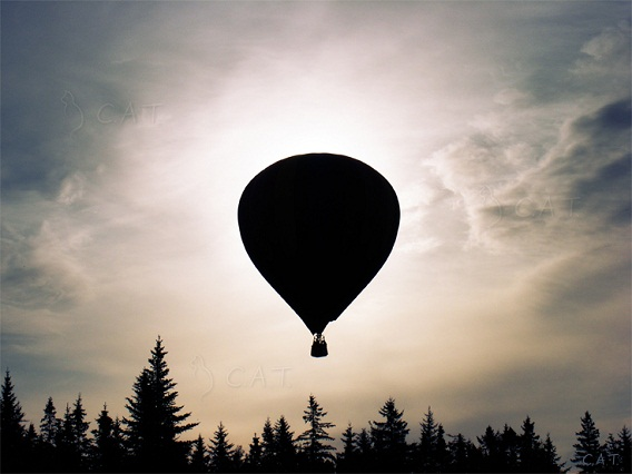 Photos of Extraordinary Hot Air Balloons (4)