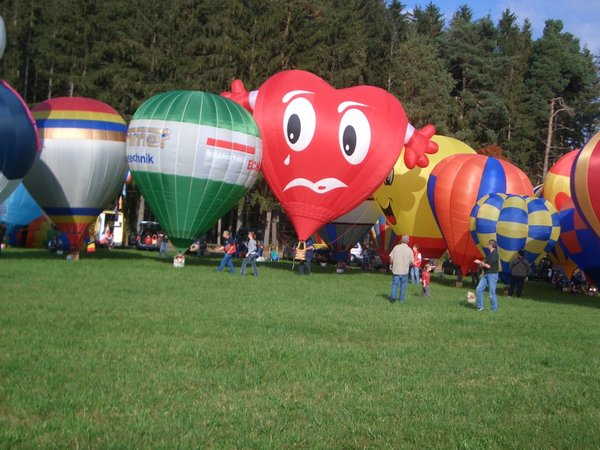 Photos of Extraordinary Hot Air Balloons (7)