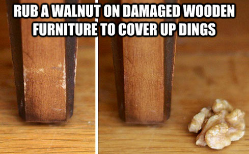 Splendid Life Hacks  (22)