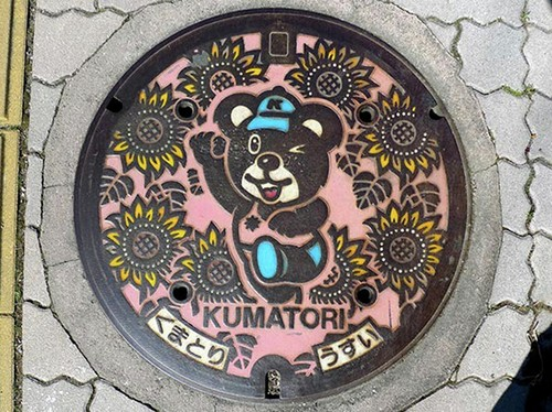 25 Most Artistic Manhole Covers (19)