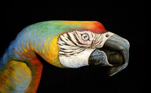 25 Photos of Epic Animal Hand Art (23)