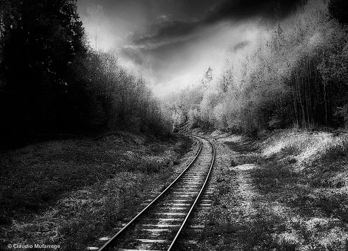 Terrific Black and White Photographs (21)